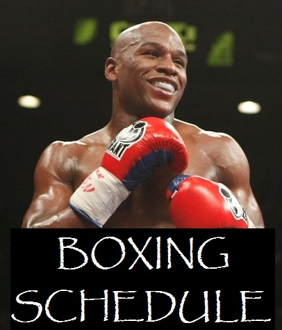 Boxing Schedule 2013 Big Fights of the year