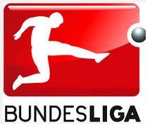 German Bundesliga Logo 2014