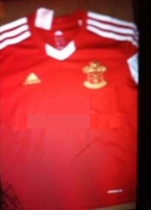 Southampton kit design adidas