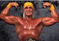 Hulk Hogan Careering earnings