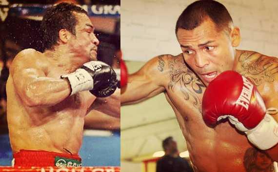 Juan Manuel Marquez vs Mike Alvarado Live Streaming