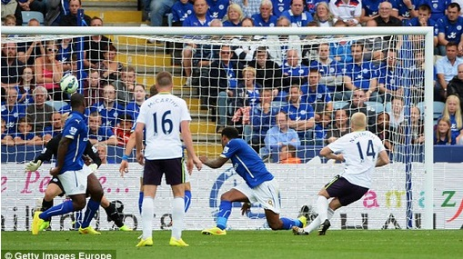 everton vs Leicester City Highlights 2014