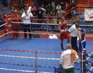 boxer knocks out referee KTFO