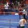 boxer knocks out referee KTFO
