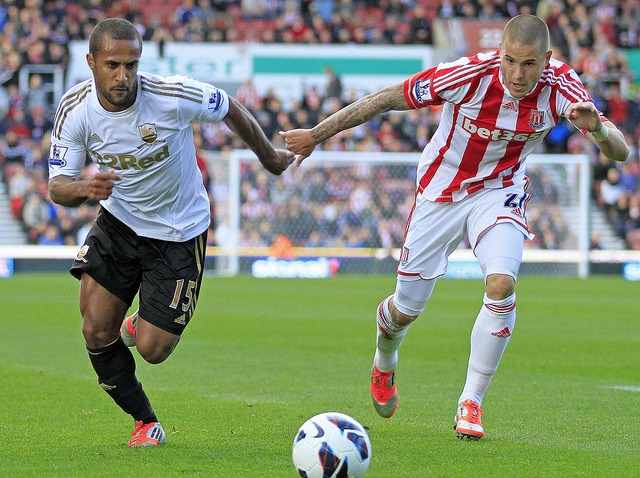 Swansea city Vs Stoke city