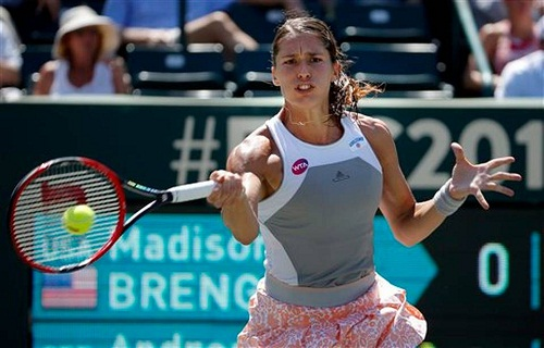 Andrea Petkovic is through to the QF (photo: thestate.com)