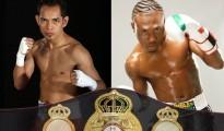 nonito donaire vs nicholas walters full fight video online knockout KO video